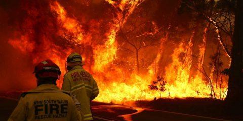 The Future of: Bushfires