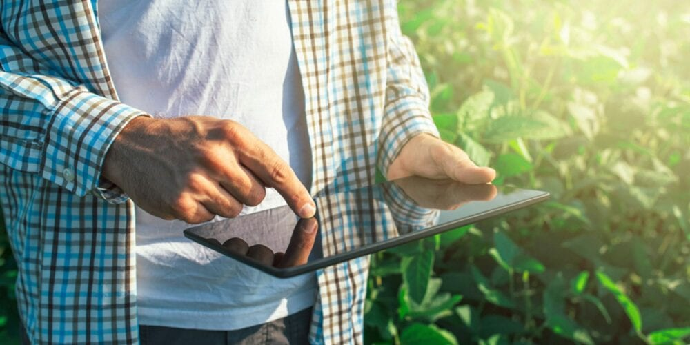 Man using tablet computer while walking through an agriculture field
